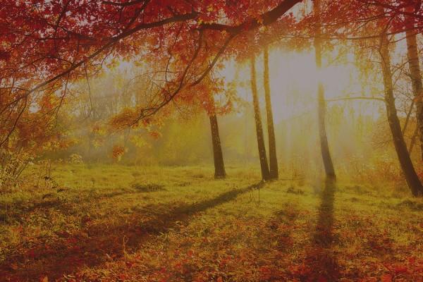 Wellness-Herbst/Winter im Achtermann